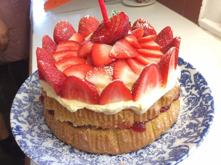 Our Fresh Strawberry Covered Sponge.